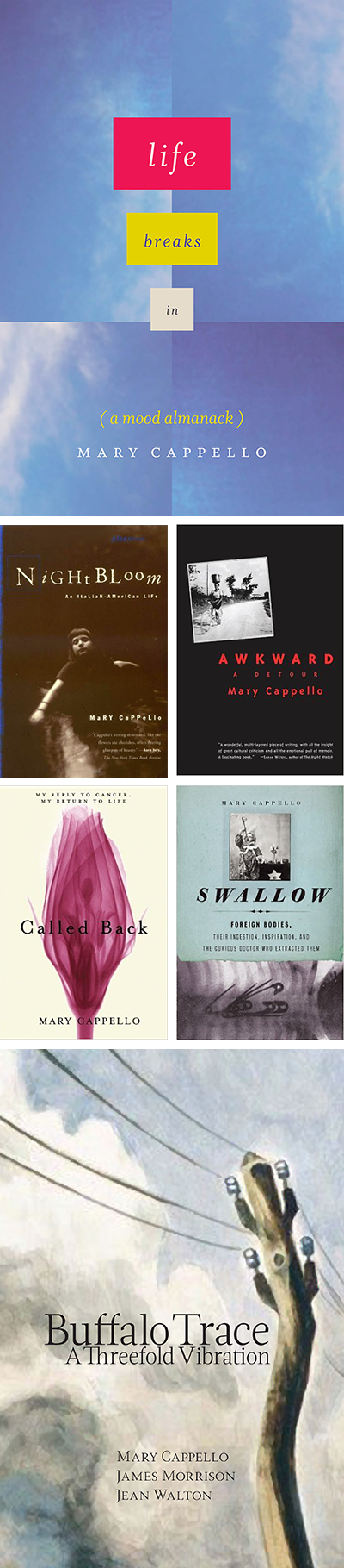 Books by Mary Cappello